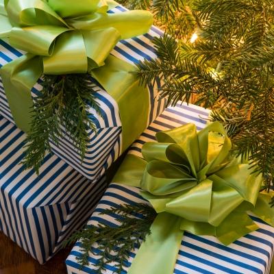 EmilyRuddo_Holiday15_GiftsBright-0005